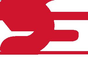 Logo De Simoni